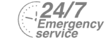 24/7 Emergency Service Pest Control in Chingford, Highams Park, E4. Call Now! 020 8166 9746
